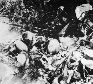 Suc vat Ho Chi Minh tham sat dan Viet o Khe Da Mai Mau Than 1968